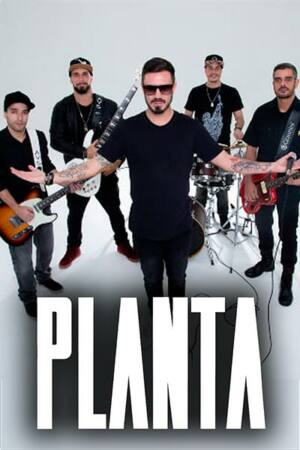 Foto Planta & Raiz | Atração Ideal | Contratar Shows e Artistas
